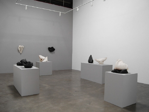 Artist: Cheryl Ann Thomas, Title: Gallery Installation View - click for larger image